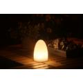 Kép 4/6 - ASZTALI LED LÁMPA tojás alakú