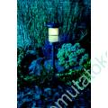 Kép 3/11 - LOCOS KERTI ÁLLÓLÁMPA 12V 1.5W LED