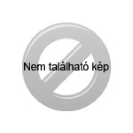 PARTY 100 SZALONNASÜTŐ HORGANYZOTT TŰZTÉRREL
